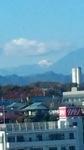 20121118-001518.jpg